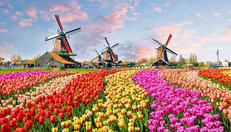 Amsterdam-Windmühlen-Zaanse-Schans