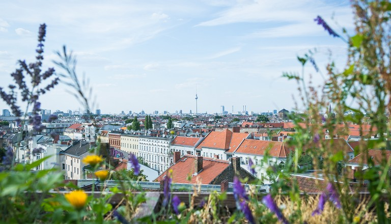 Blick über Berlin-Neukölln in Richtung Mitte mit Fernsehturm.