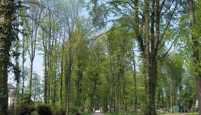 Bruessel - Schloss Seneffe