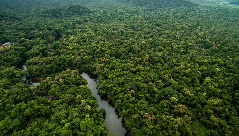 Honduras - Biospharenreservat Rio Platano
