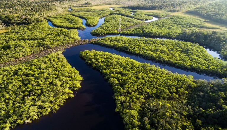 Kreuzfahrt - Amazonas - Manaus