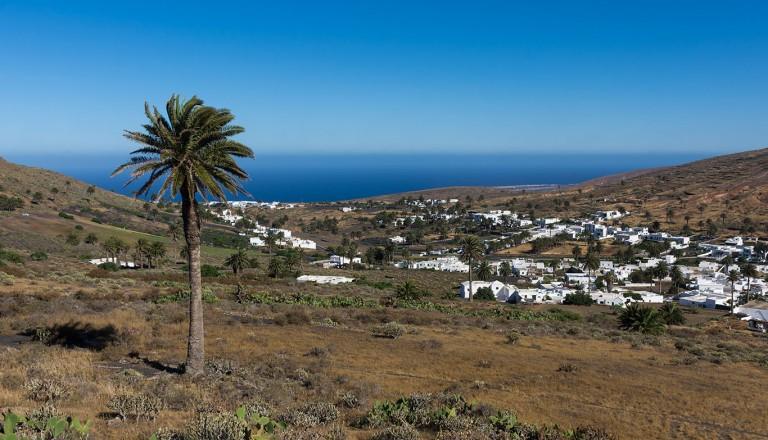 Lanzarote - Vallée de Haría