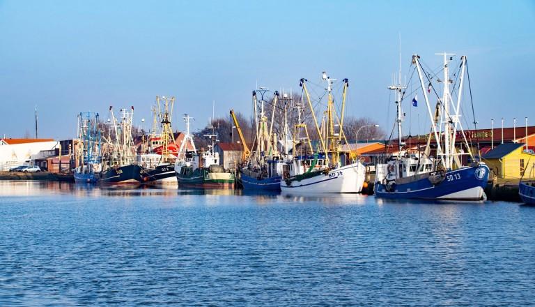 Schleswig-Holstein - Büsum