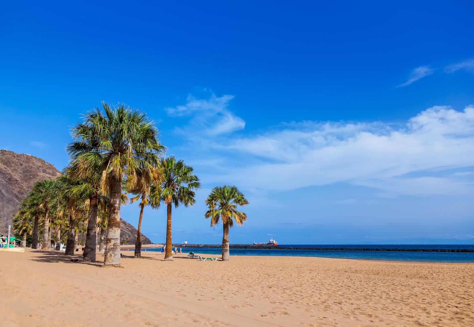 Teneriffa Sandstrand mit Palmen
